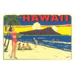 Hawaii Volleyball Sticker