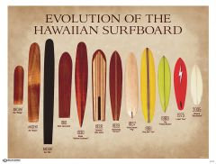 Evolution of Surfboards